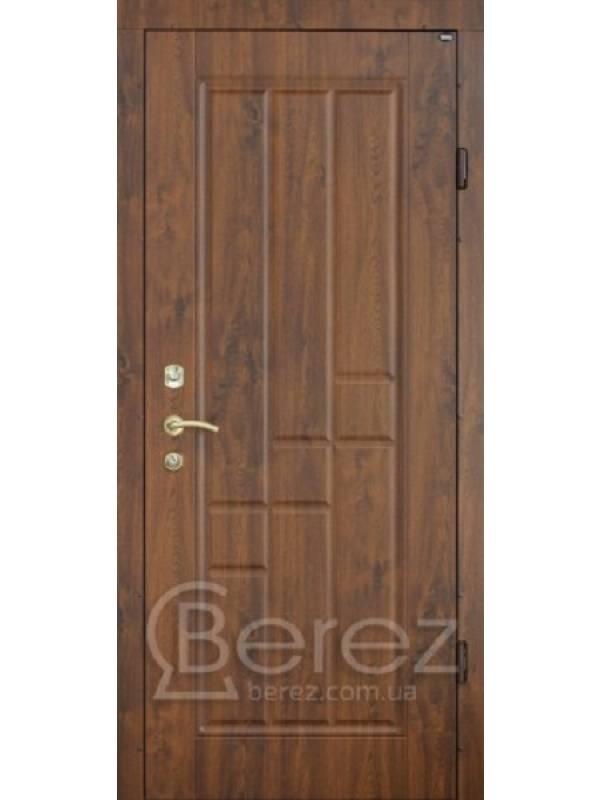 В23 Берез Strada - Вхідні двері, Двері зовнішні (в будинок)